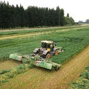 Żółty traktor rolniczy firmy JCB z kosiarkami dyskowymi GigaCUT 861 z transporterami kosi mieszankę gorzowską www.korbanek.pl