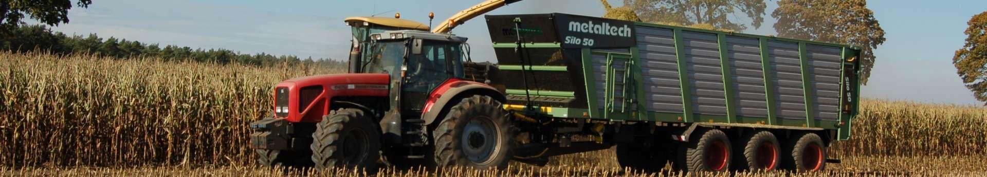 Ciąnik rolniczy Massey Ferguson 6270 z przyczepą Metaltech Mirosławiec Silo pracujący w polu przy kukurydzy