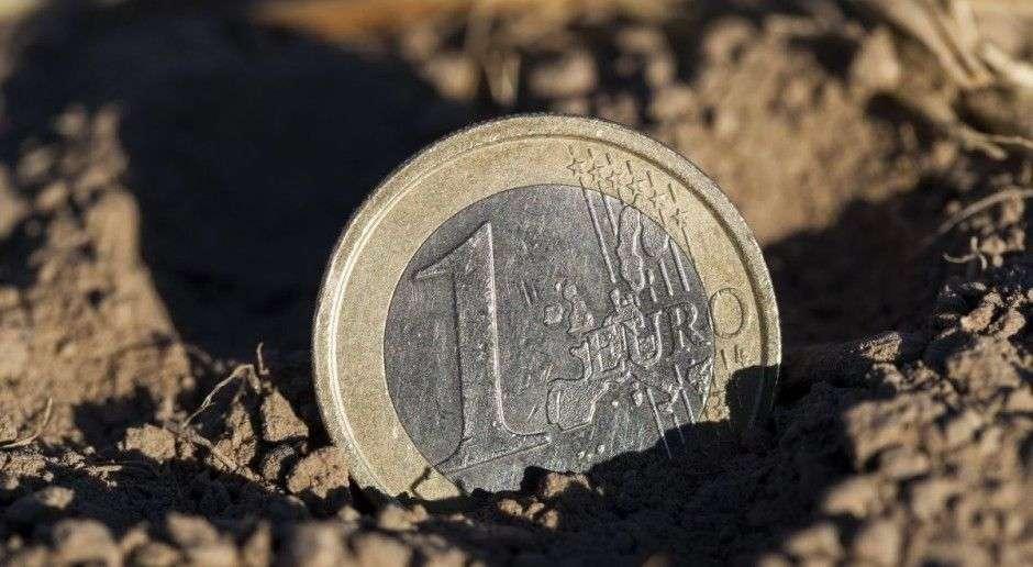 1 EURO logo