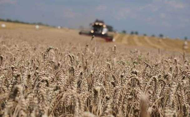 pokaz-maszyn-rolniczych-usługa-600.jpg