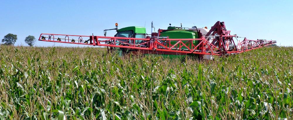 Opryskiwacz samobieżny Krukowiak HERKULES w kukurydzy widziany od tyłu