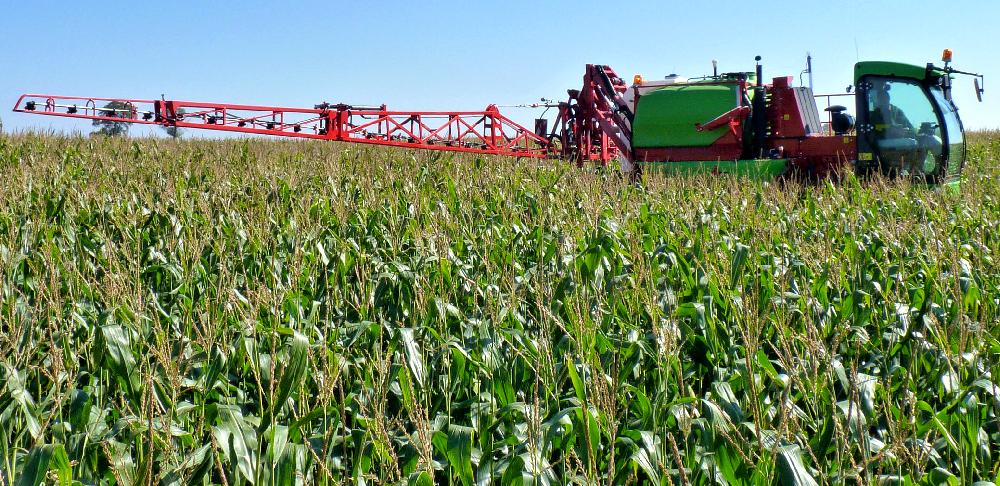 Opryskiwacz samobieżny Krukowiak HERKULES w kukurydzy