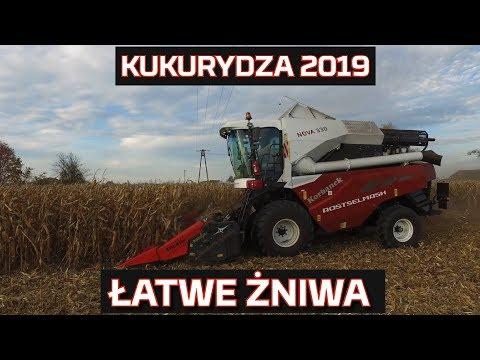 Embedded thumbnail for Kukurydza 2019 Rostselmash Nova |Żniwa | TEST | Nowy nabytek