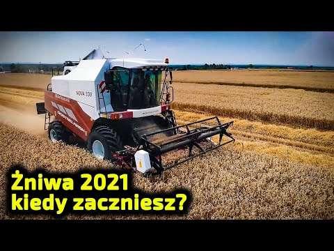 Embedded thumbnail for Żniwa 2021 Kto pierwszy zacznie? 5 kontenerowców z Arbosami płynie do Polski